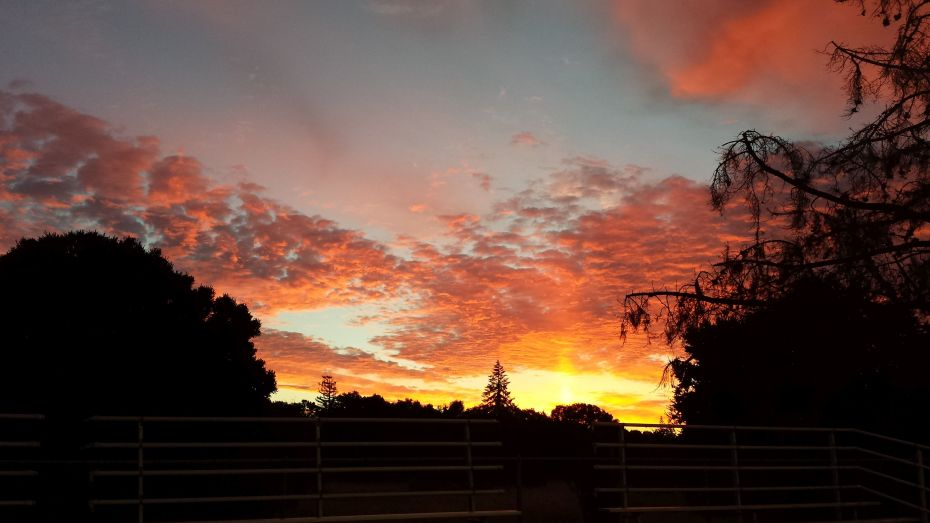 sunset-cuesta-park