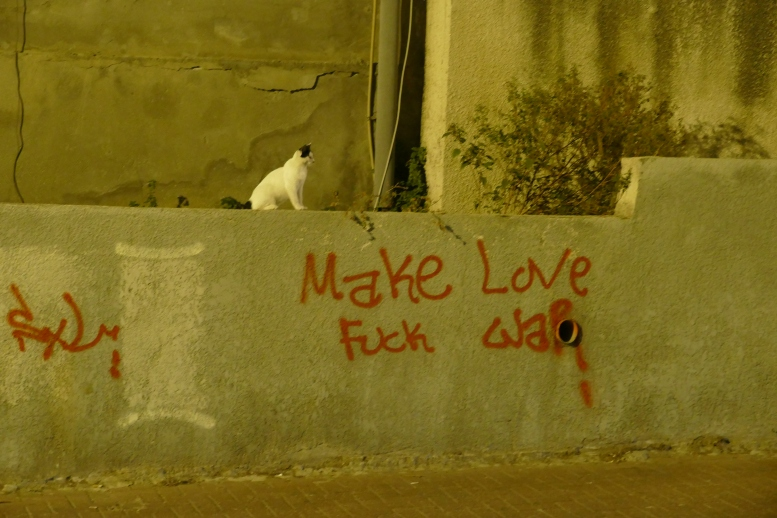 tel aviv cat and graffiti