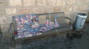 bench wtih peacock