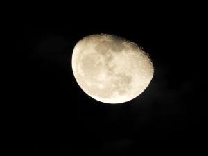 moon tel aviv